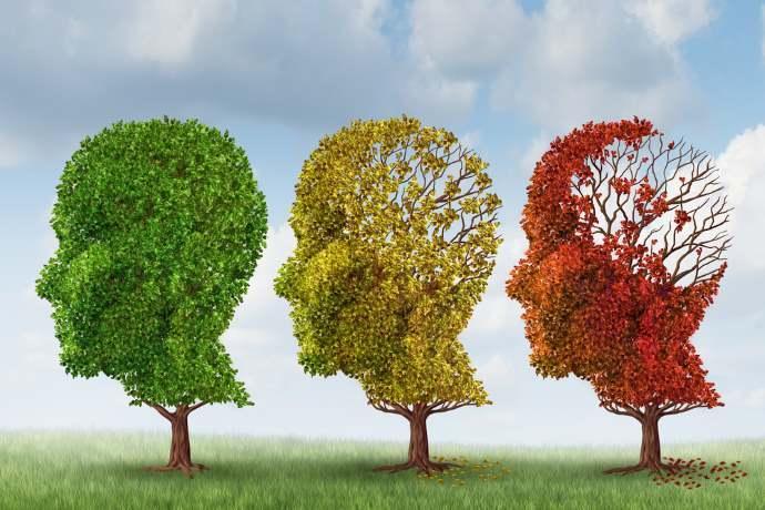Alzheimer stagioni