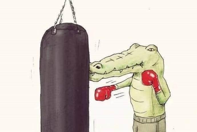 illustrazioni-coccodrillo