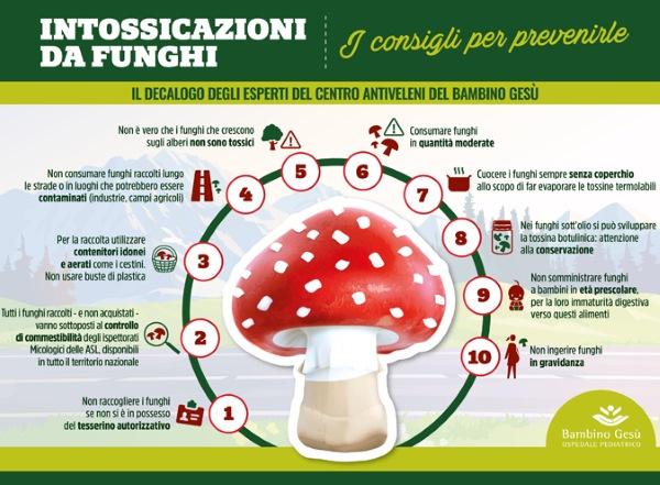 infografica funghi
