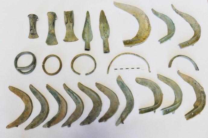 cane reperti archeologici