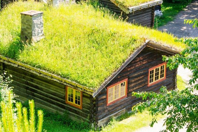 tetti verdi inverno