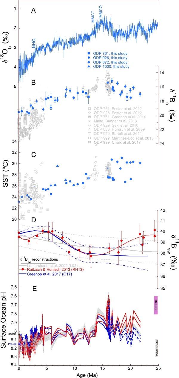 grafico acidificazione