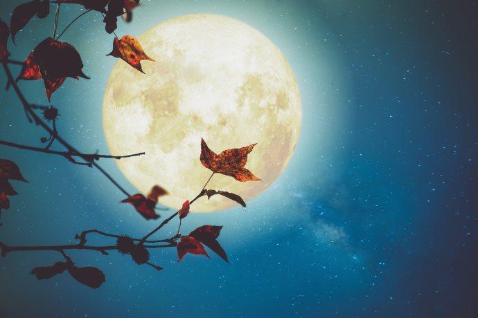 luna piena ottobre cacciatore