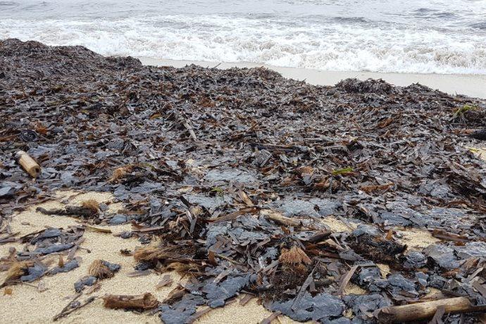 Marea nera in Costa Azzurra