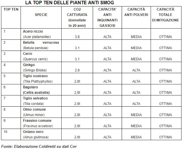 tabella piante anti smog