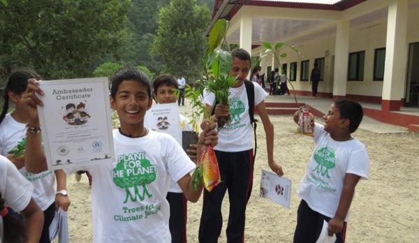 bambini alberi
