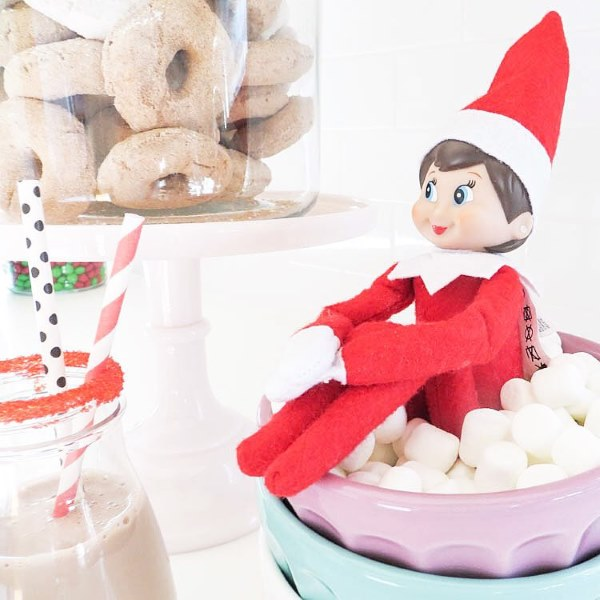elf on the shelf2