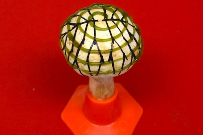 funghi bionici