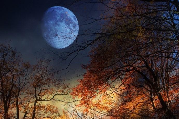 luna piena di novembre