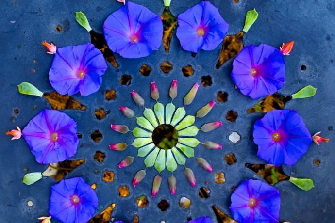 Con Fiori.I Meravigliosi Mandala Realizzati Con Fiori E Foglie Greenme It