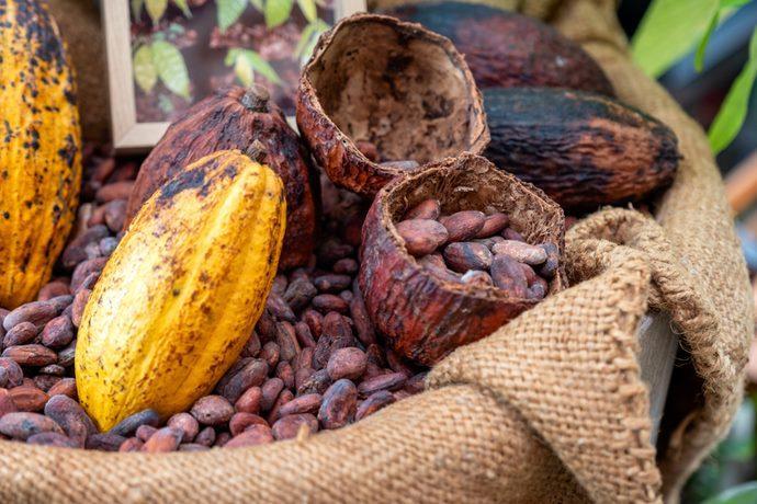 Buccia cacao compost