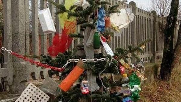 albero rifiuti brescia