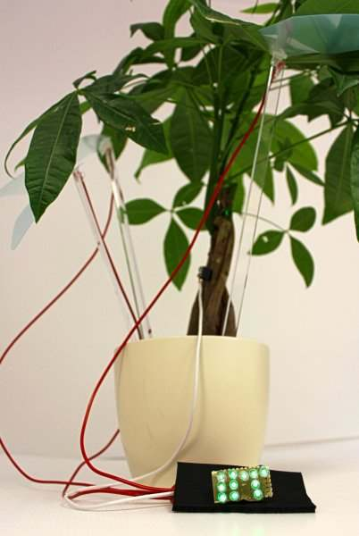 piante elettricità