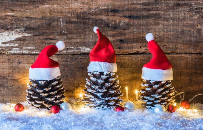pigne decorazioni natalizie