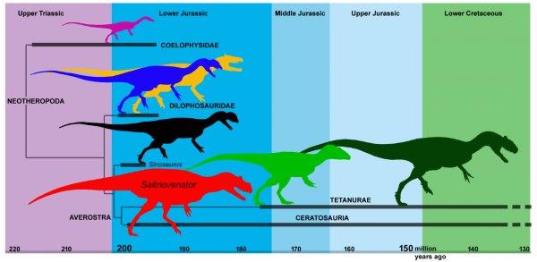 saltriovenator evoluzione