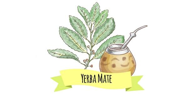 yerba-mate-ogni-giorno