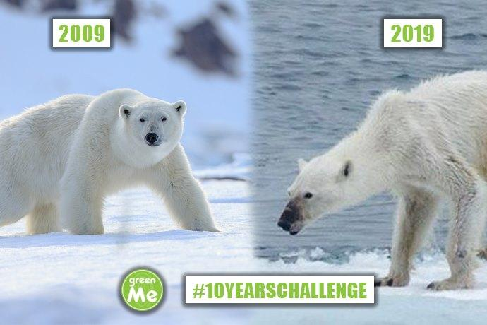 10 years challenge ambiente