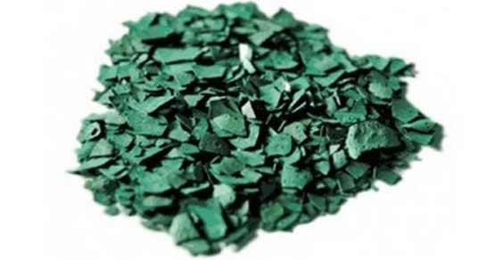 alga spirulina 1