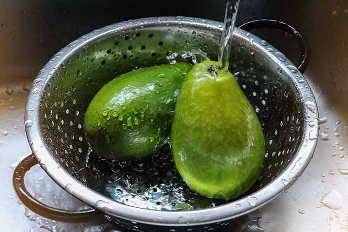 lavare-avocado
