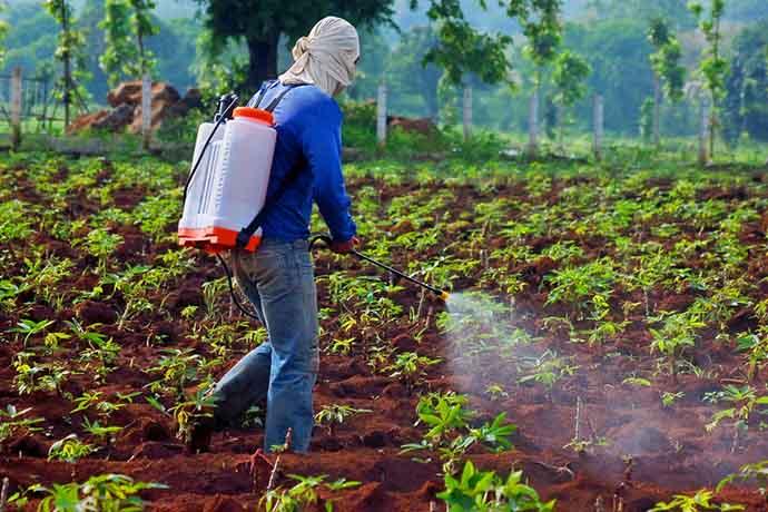 pesticidi-olfatto