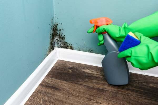 pulire pareti 1