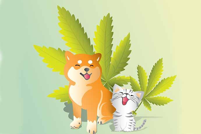cannabis-cani-gatti