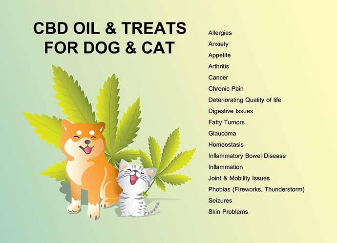 cannabis cani gatti infografica 1
