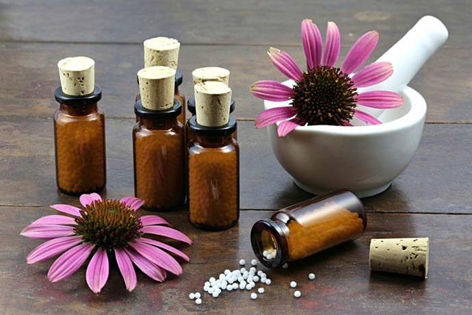echinacea medicina naturale