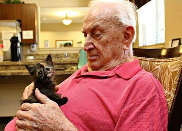 gatti e anziani 1
