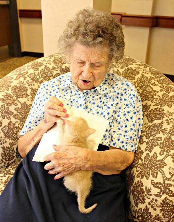 gatti e anziani 3