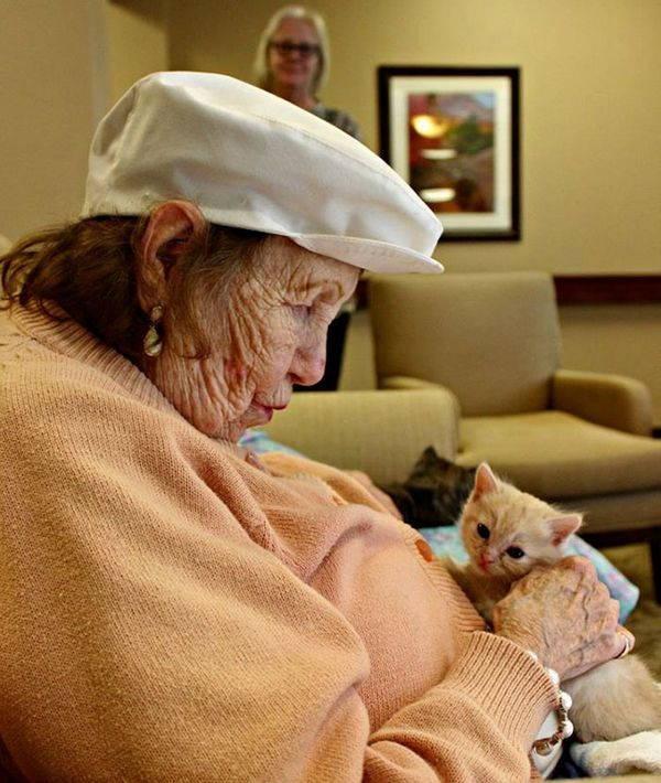 gatti e anziani 6