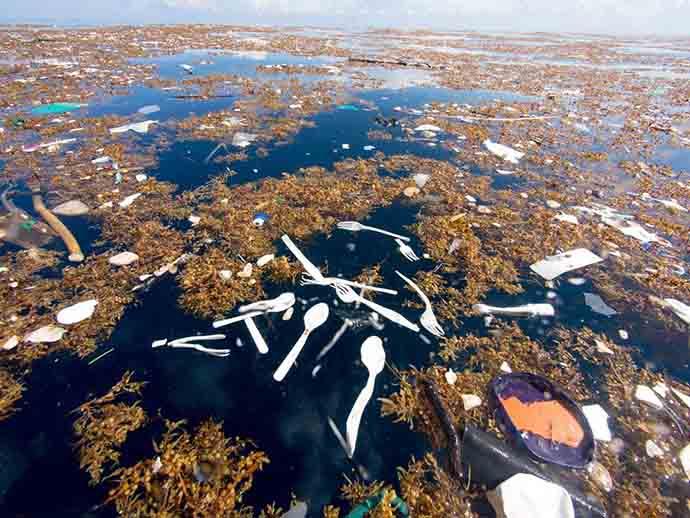 mare plastica caraibi