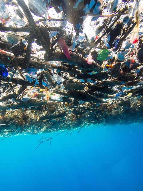 mare plastica caraibi 2