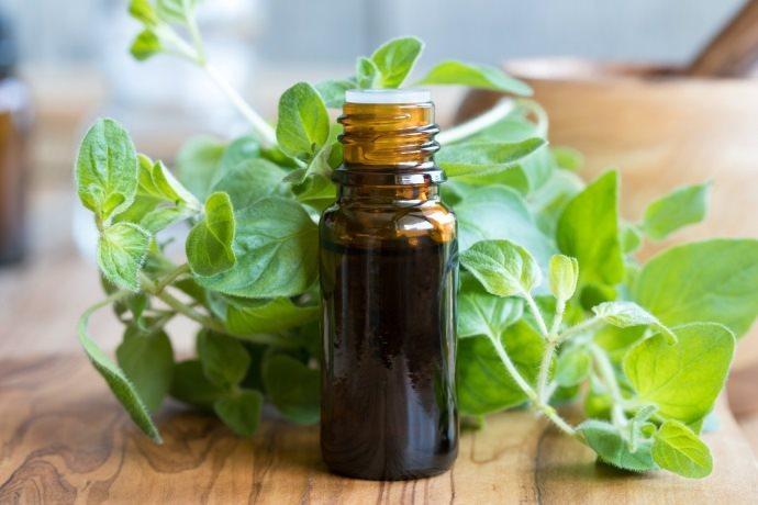 olio essenziale origano