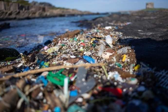 Plastica sulla Pelosa