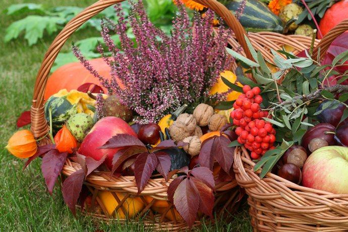 frutta verdura benefici psicologici