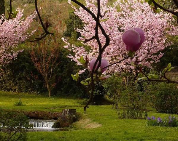 giardino ninfa 1