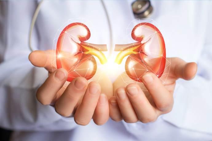 Malattie reni