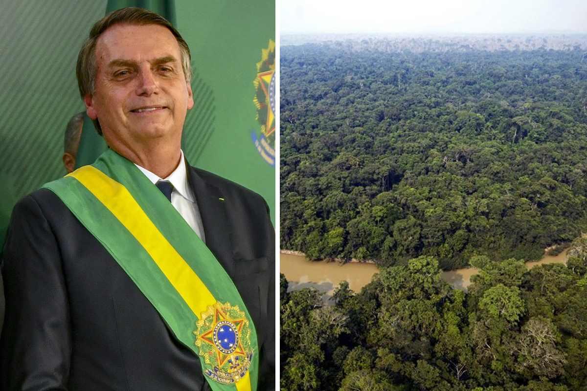 Bolsonaro renca