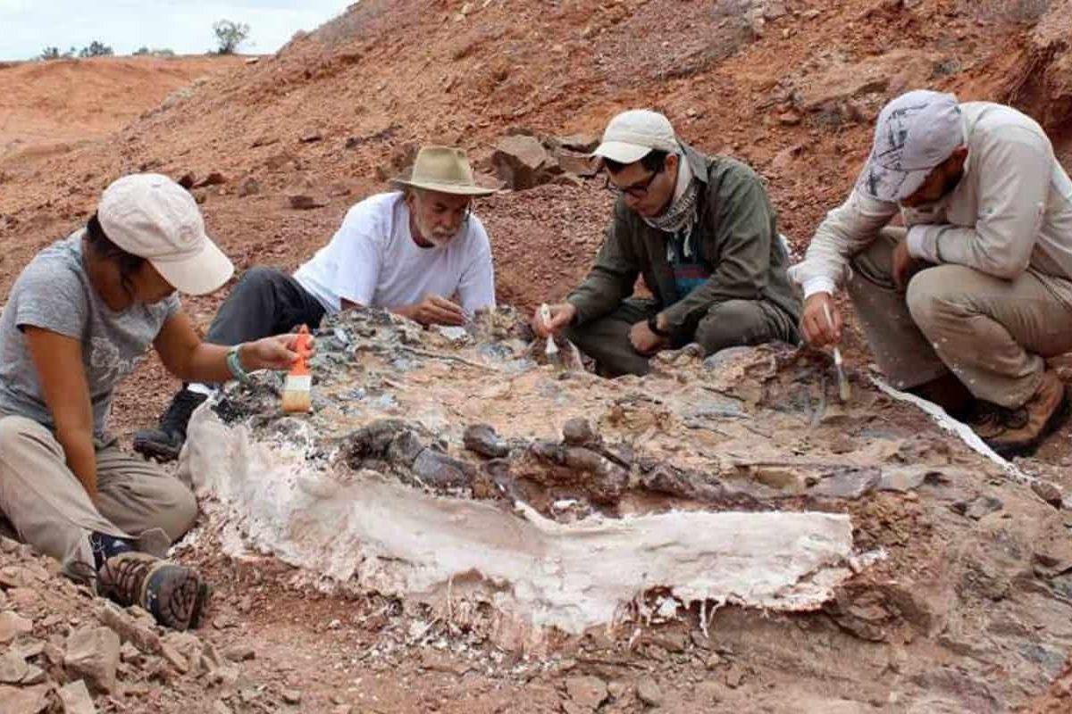 cimitero dinosauri Argentina