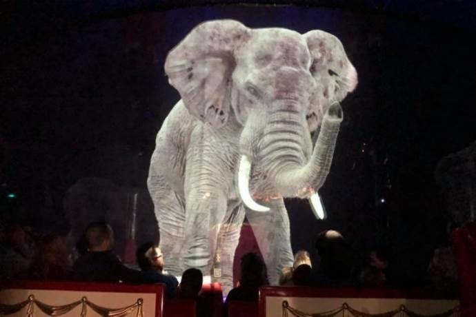 circo-senza-animali