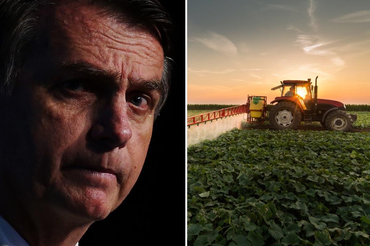 Bolsonaro pesticidi