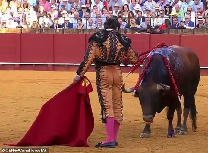 matador toro1
