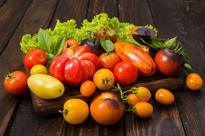 piantare pomodori varieta