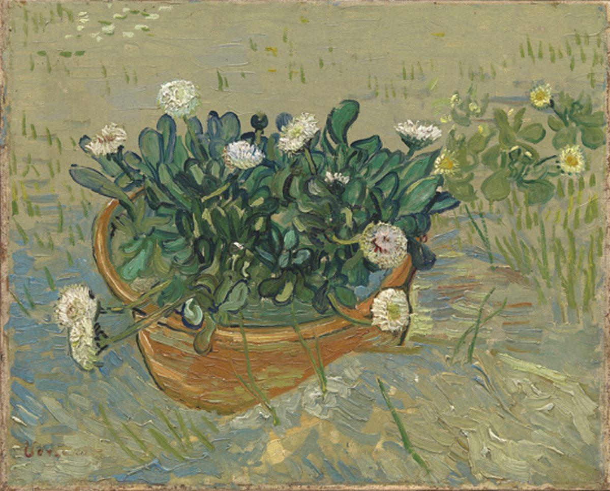 Van Gogh Margherite