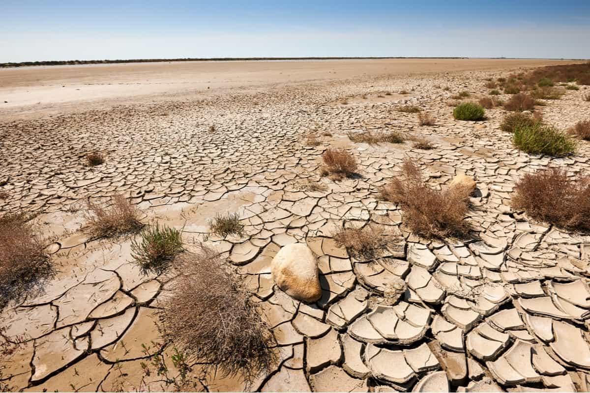 apartheid clima