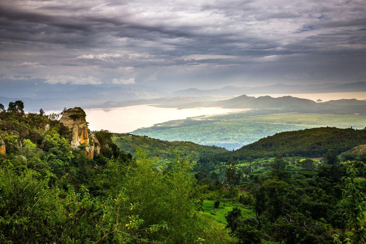 alberi Etiopia