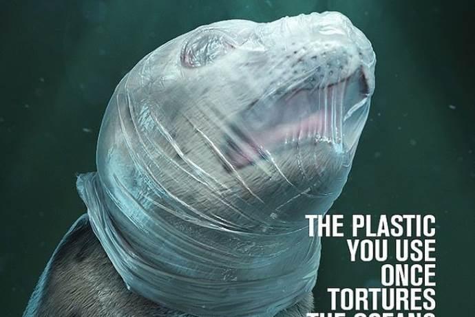 plastica-oceani-animali