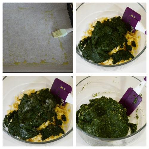 spinacine vegetali 2