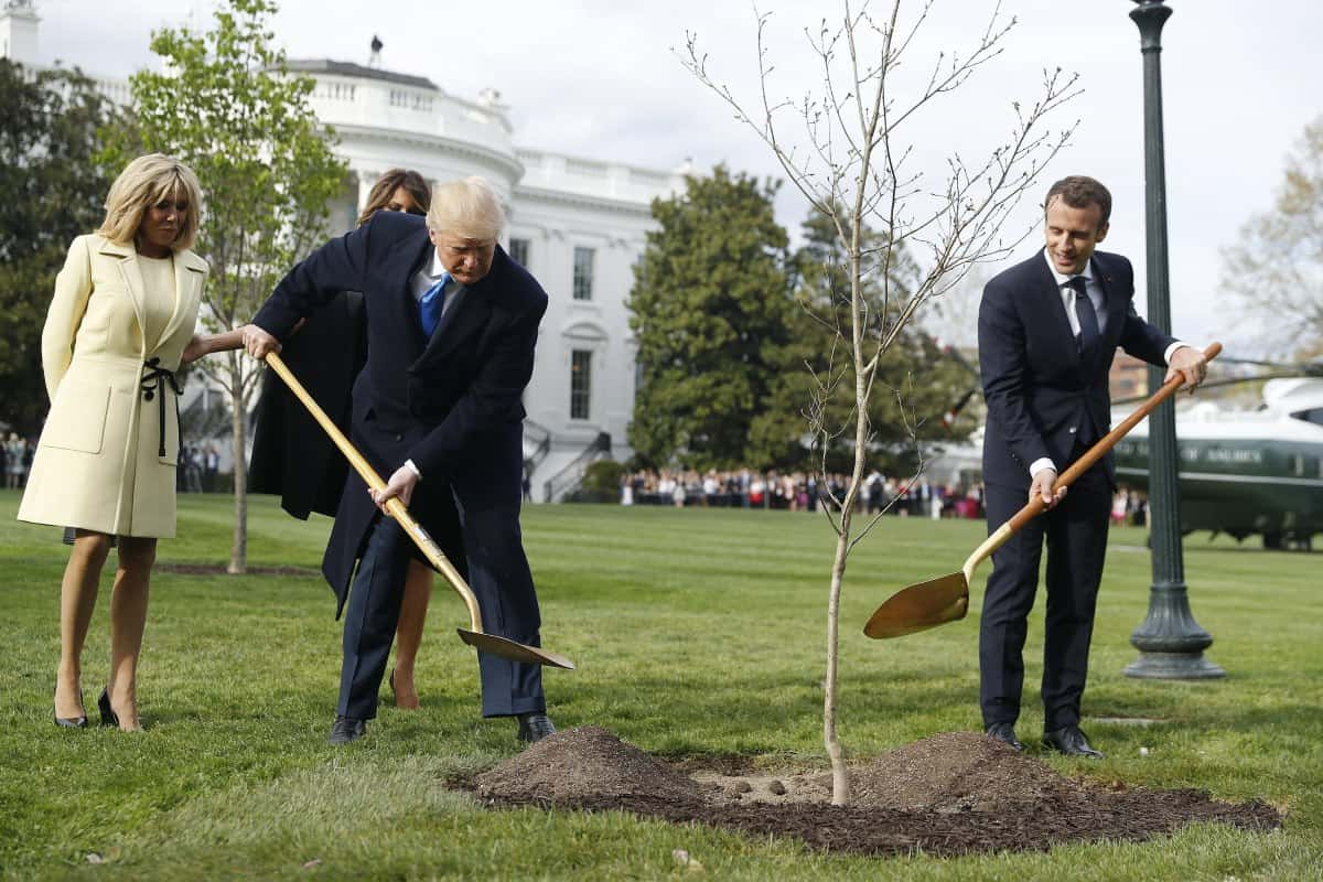 albero Trump Macron